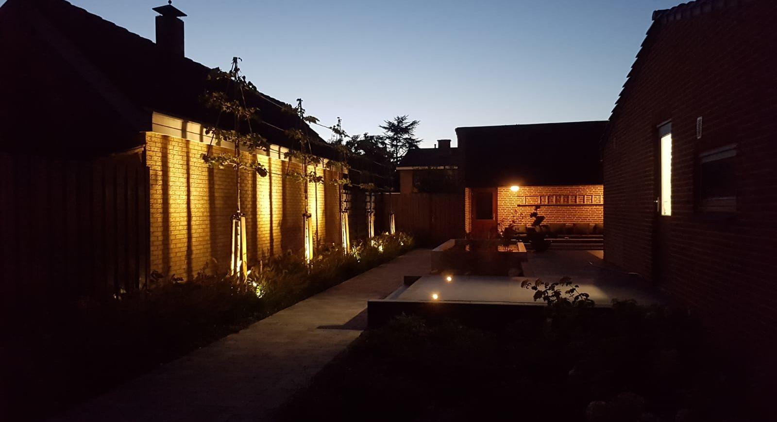 Tuin bij nacht
